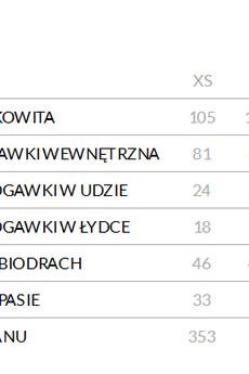 Spodnie_damskie_ze_%c5%9bci%c4%85gaczem